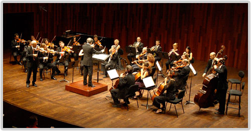 The Catalan Chamber Orchestra