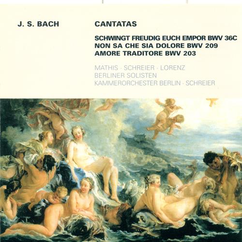 BACH, J.S.: Cantatas - BWV 36c, 203, 209 (Schreier)