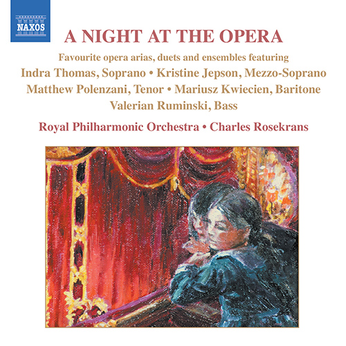 NIGHT AT THE OPERA (A) - Favourite opera arias, duets and ensembles