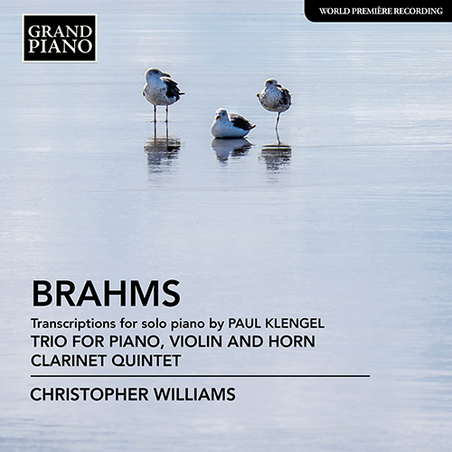 BRAHMS, J.: Trio for Violin, Horn and Piano / Clarinet Quintet (arr. P. Klengel for piano)